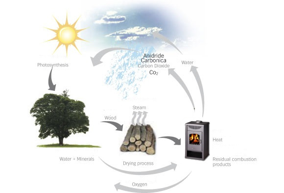 Burning With Wood - The Sustainable Choice - Heating With Wood